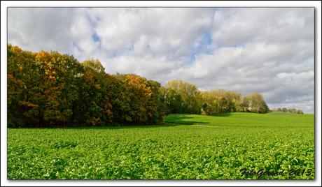 """Herfst in """"vallee du Geer"""""""