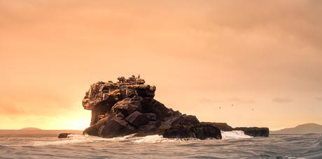 Galapagos dream