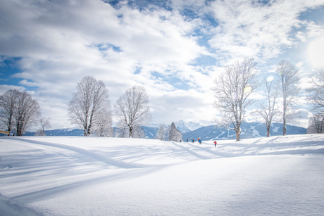 Winter wonderland Ramsau (1 van 1)