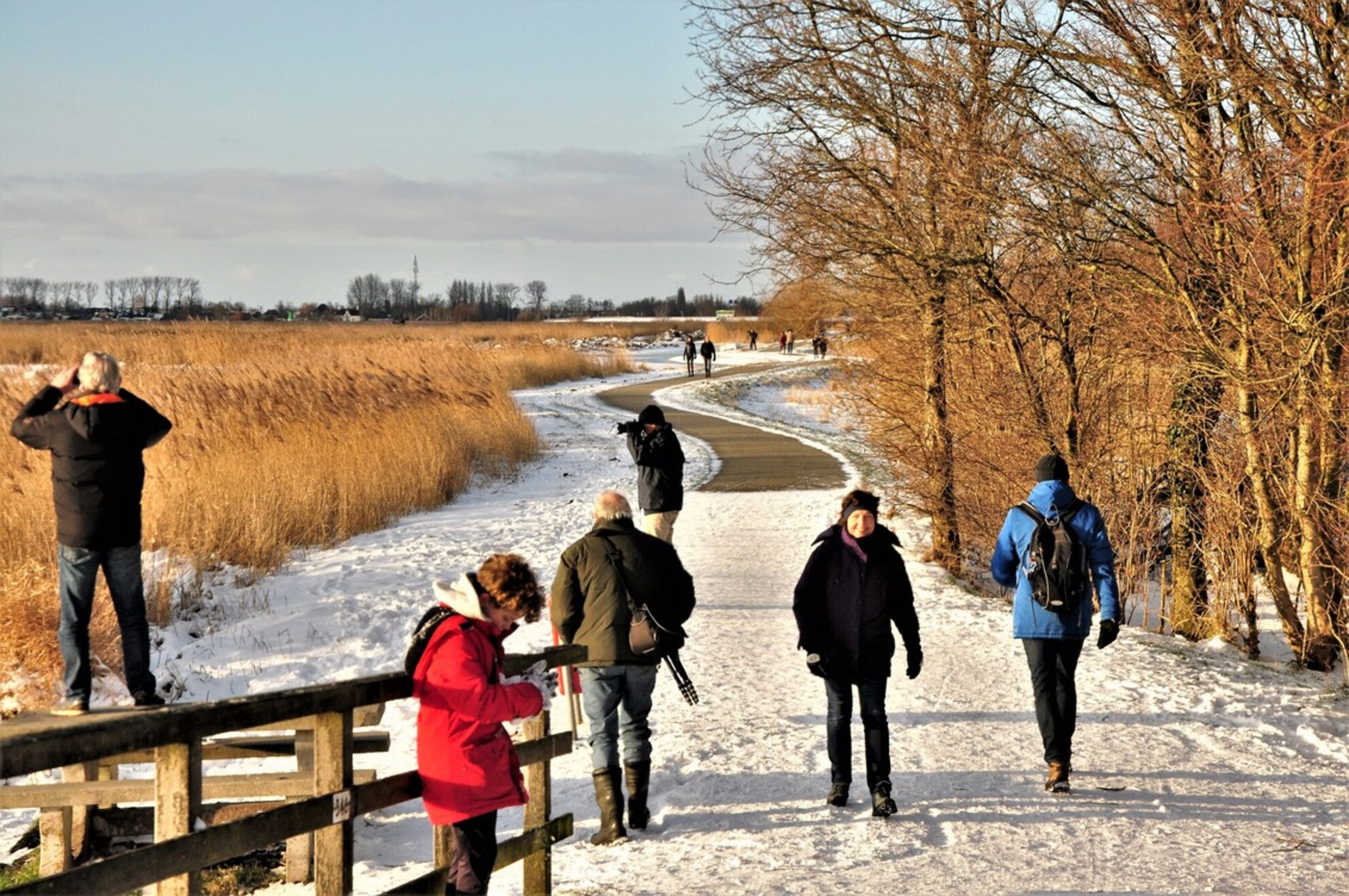 Het laatste.... - Het laatste van een eerste winterperiode... Helaas te kort. - foto door 1103 op 23-02-2021 - deze foto bevat: zon, water, lente, natuur, winter, landschap, bomen, polder