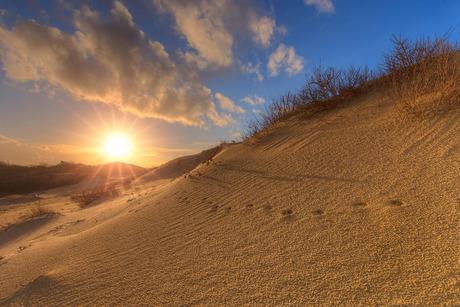 Zonsondergang in het Westduinpark