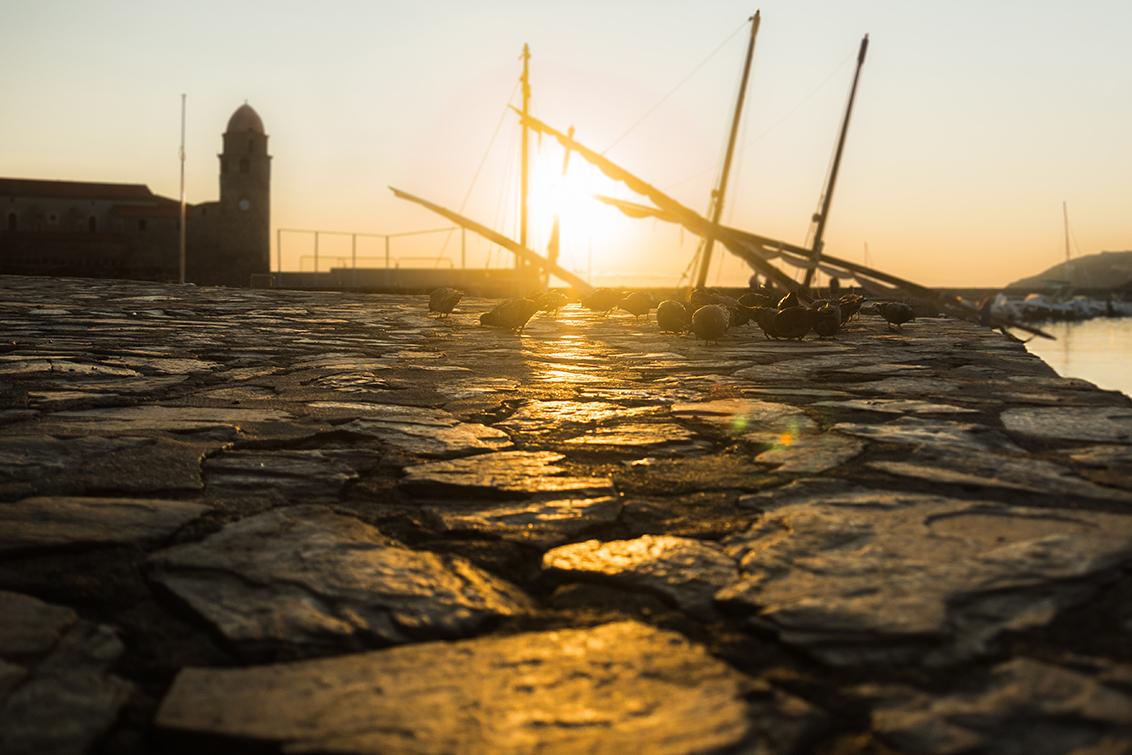 Duifjes - Het blijft tricky, fotograferen met tegenlicht, maar deze Duiven zaten hier zo mooi dat ik het niet kon laten.  Mijn Sony 18-250mm lens is stuk en  - foto door Sake-van-Pelt op 18-09-2014 - deze foto bevat: lucht, zon, strand, zee, water, natuur, licht, boot, vakantie, frankrijk, spiegeling, landschap, tegenlicht, kerk, haven, rivier, kust, collioure