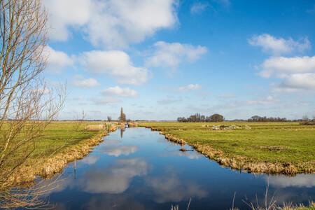 landschap-5028 - Na een mistige ochtend klaart het helemaal op! - foto door jvhpicture op 28-02-2021 - deze foto bevat: wolken, zon, natuur, spiegeling, landschap, bomen, polder
