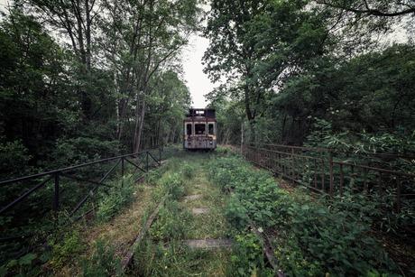 Een oude trein in het bos