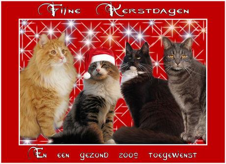 Kerstkaart met Kalle,Smul,Ozzy en Joris