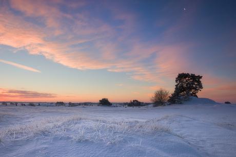 Winterse zonsopkomst