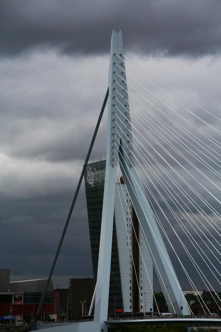 Erasmusbrug - Erasmusbrug in Rotterdam - foto door fritskooijmans op 25-03-2011 - deze foto bevat: water, rotterdam, brug