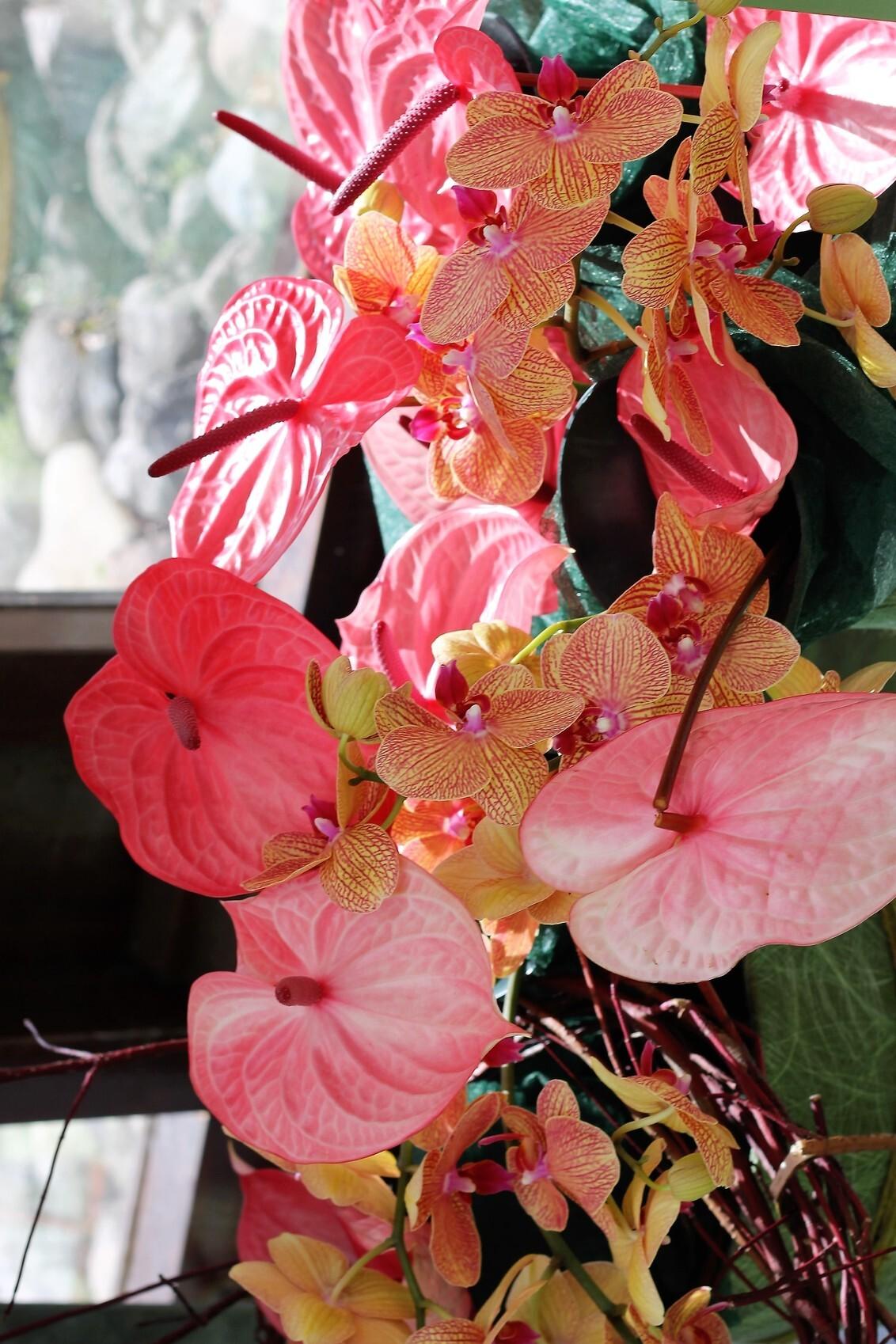 125 - gemaakt in keu hof in lissen - foto door ltomey op 07-12-2020 - deze foto bevat: bloem