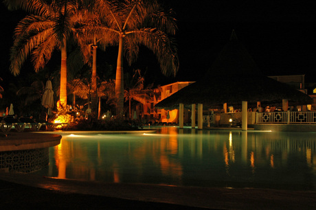 The Pool by Night (2)