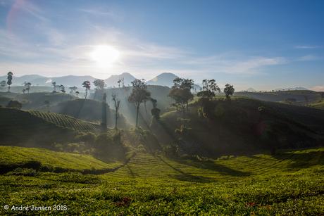 Indonesie Java