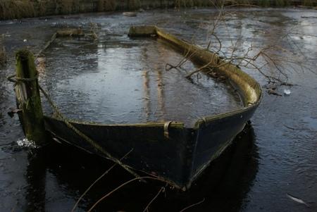 Nature 11 - Dit is een serie over de natuur in noord-Holland. Fraai landschap vastgelegd met briljante opnames. Dit is de afsluiter van de deze ijzige middag,  - foto door maarten1971 op 03-01-2009 - deze foto bevat: do, kou, sony, ijzig, alpha, oostzaan, twiske