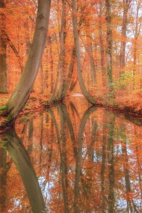 Herfst in Delden