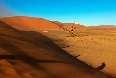 Dune45shadows