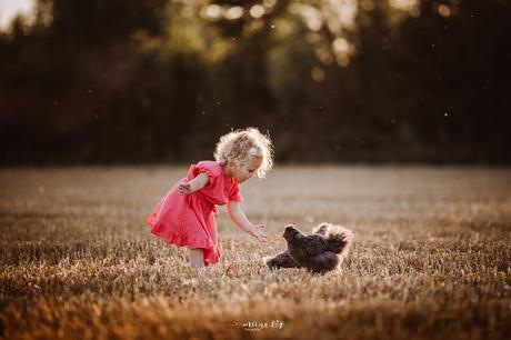Het meisje en de kip