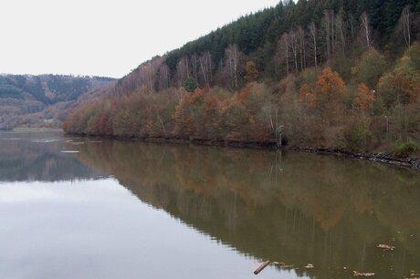 herfstkleuren in luxemburg
