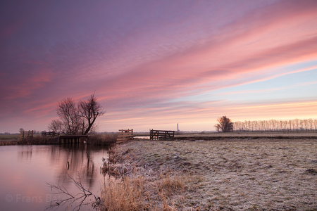 De krimpenerwaard 54 - Polder De Nes onder rook van Bergambacht. - foto door celtre op 01-03-2015 - deze foto bevat: wolken, boom, rijp, landschap, ochtenlicht, winterlicht, celtre, de krimpenerwaard