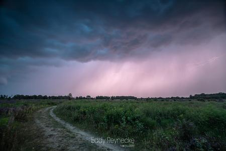 Onweer Baloerveld - Afgelopen nazomer trokken er dikke onweersbuien over het land en ben ik op op pad gegaan om onweer te fotograferen. De lucht was echt super gaaf en d - foto door eddy-reynecke op 22-12-2020 - deze foto bevat: lucht, wolken, zon, thunderstorm, natuur, licht, herfst, avond, landschap, heide, bos, tegenlicht, bomen, storm, nacht, onweer, bliksem, lange sluitertijd