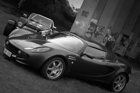 Lotus Versus Dax