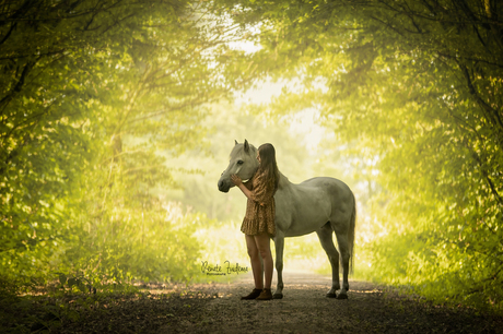 Fairy forest pony