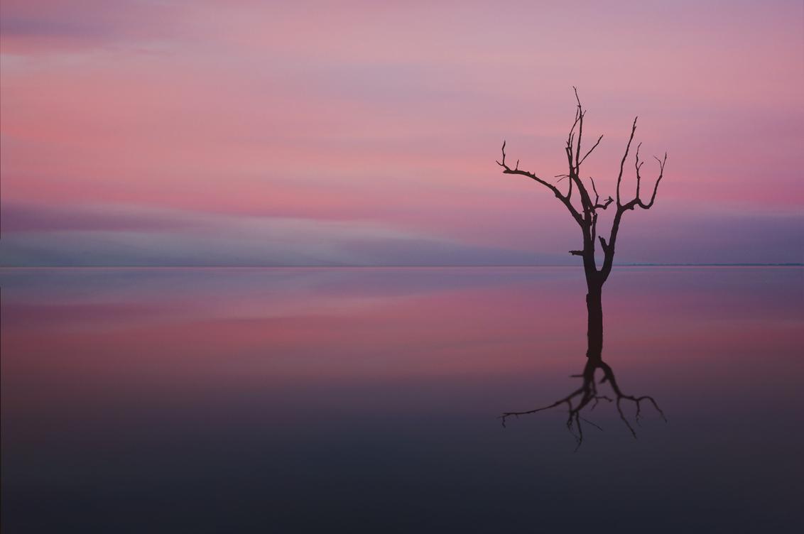 MINIMALISME... - Less is more - foto door KPPhotography op 30-01-2018