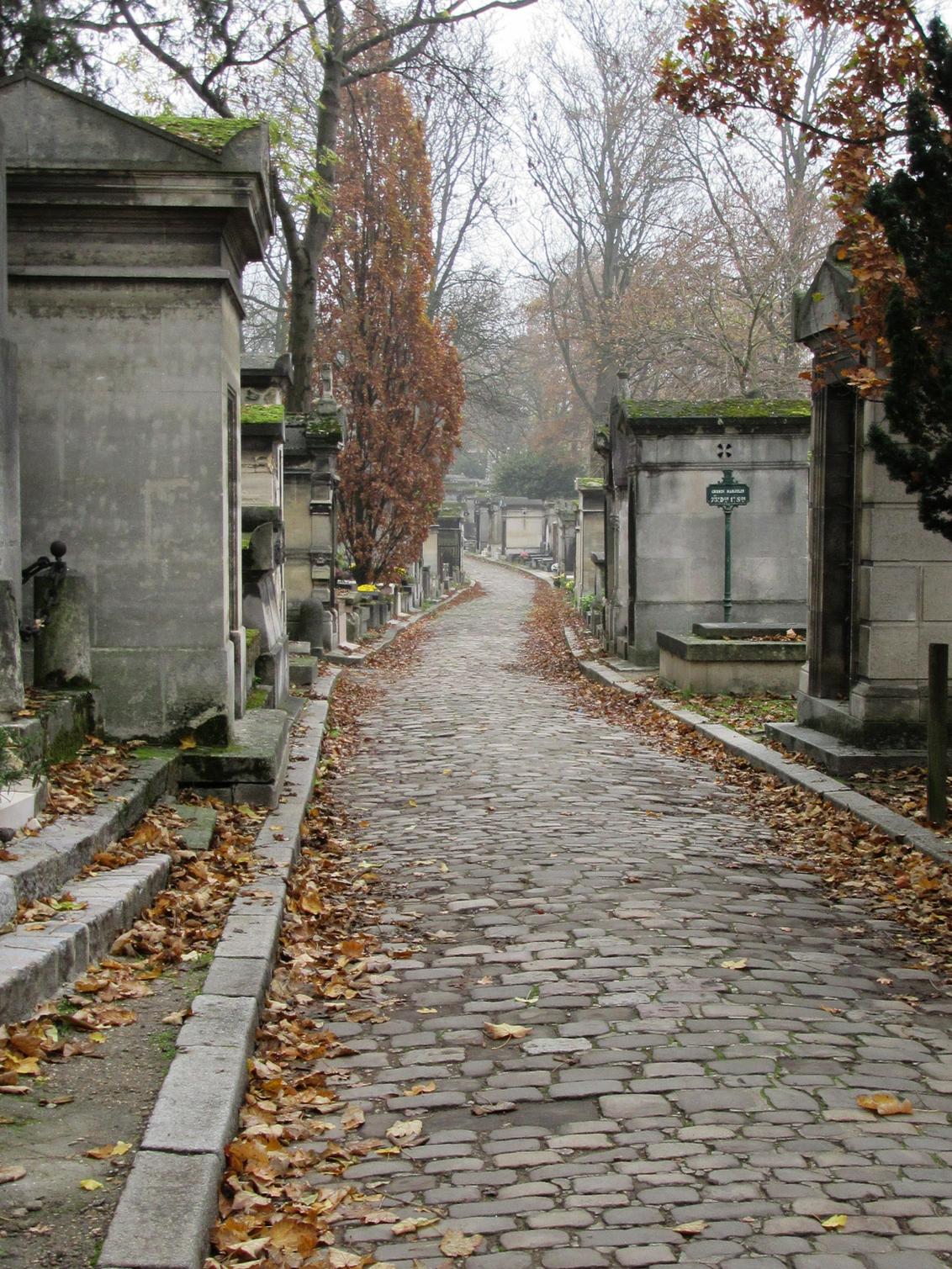 Kerkhof Parijs - - - foto door lisah98 op 24-11-2020 - deze foto bevat: uitzicht, natuur, trein, reizen, landschap, museum, wandelen, eiffeltoren, straatfotografie, toerisme, reisfotografie, europa