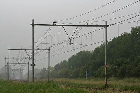 Sporen in de mist