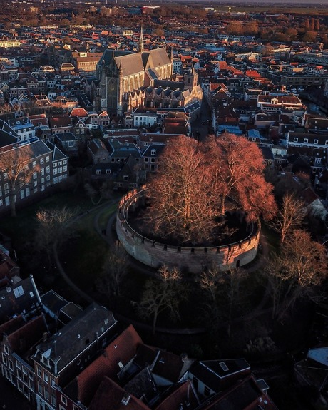 Pracht van Leiden