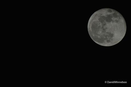 Moon23-2