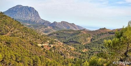 Spaans landschap. - Bedankt voor al jullie reacties op mijn vorige foto's.:) - foto door ocelot_zoom op 12-10-2020 - deze foto bevat: natuur, landschap, bos, bomen, bergen, spanje, nicojo