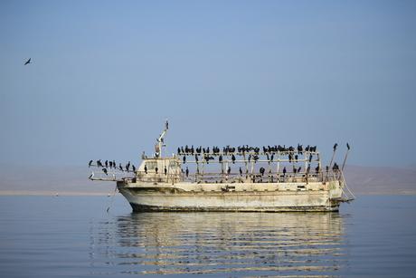 Verlaten boot in Paracas, Peru