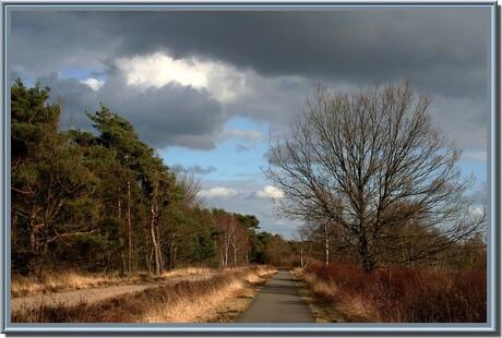 Natuurgebied De Malpie