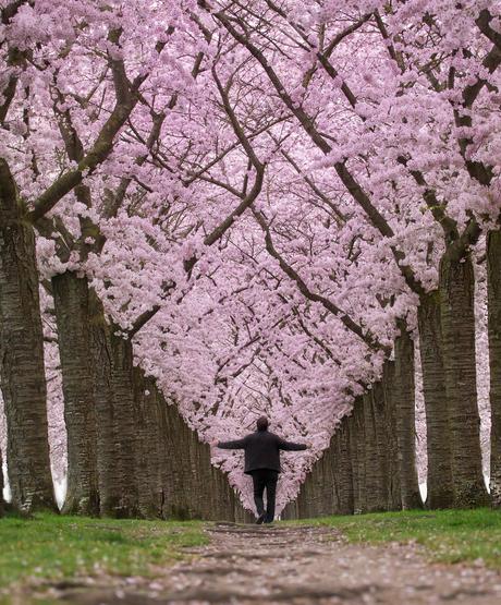Feel spring
