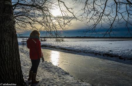 """Kijken naar de Egmondse Abdij - Kijkend naar de Egmondse Abdij schiet je ineens een zin uit Het Land van Maas en Waal van Boudewijn de Groot te binnen. """"Wanneer je 't schudt dan sn - foto door rits op 14-02-2021 - deze foto bevat: sneeuw, landschap, tegenlicht, egmond binnen, zuidereg, egmondse abdij"""