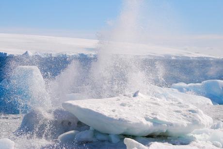 Nog eens Antarctica..
