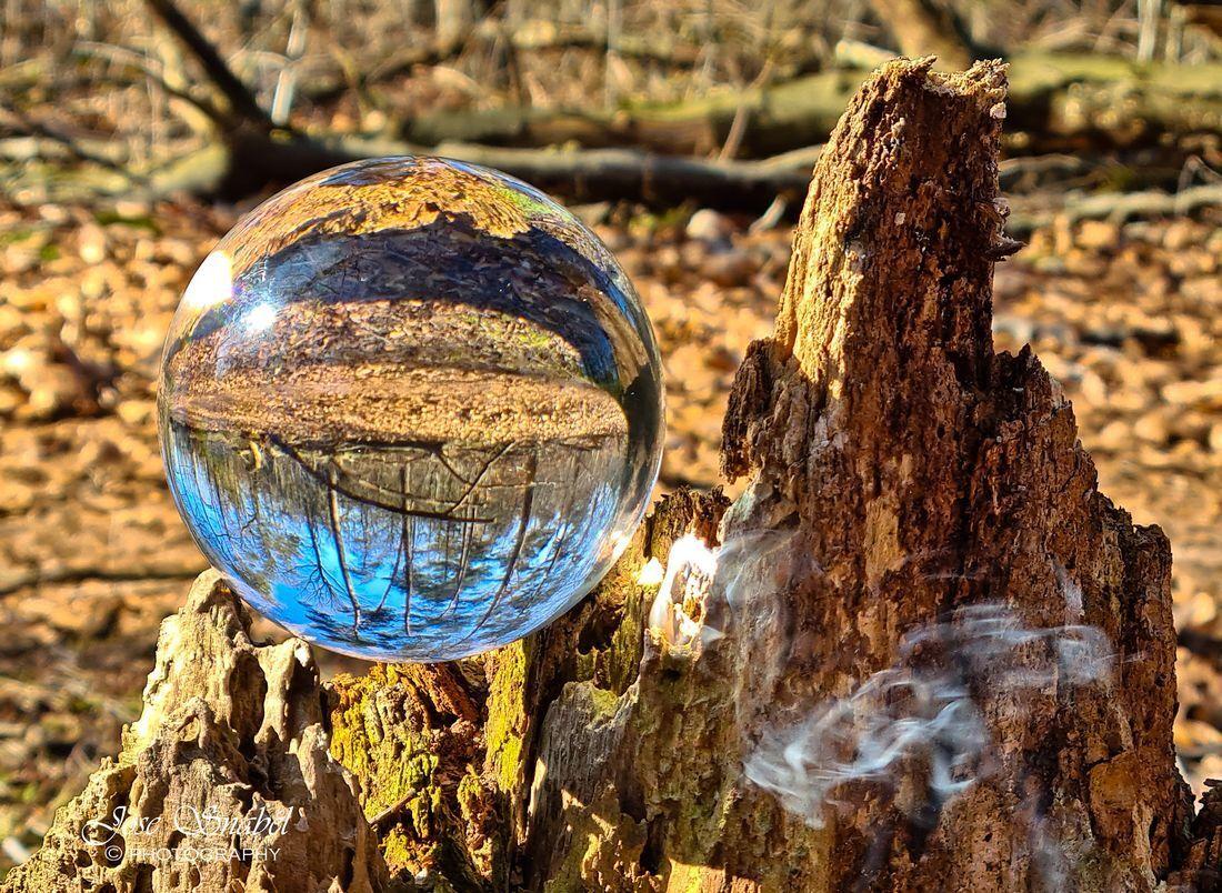 Lensbol - Foto gemaakt met deze lensbol, zo zie je maar hoe snel glas gaat branden, binnen 5 minuten was er al rook ontwikkeling. Ik dacht echt wat is dit nou  - foto door Twist_zoom op 03-03-2021 - deze foto bevat: zon, natuur, spiegeling, boomstronk, bossen, lensbol