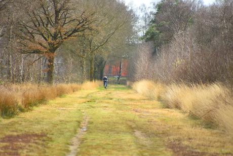 DSC_1737 Fietsers in het veld.