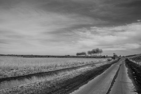 Zuid-Hollands eiland