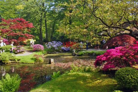 Japanse tuin Clingendael Wassenaar