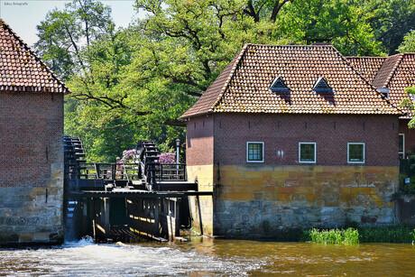 DSC_4988 Watermolen van Singraven.