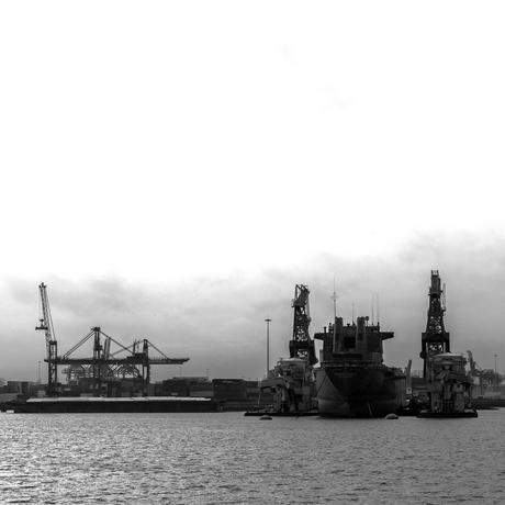 Waalhaven december 2020 .