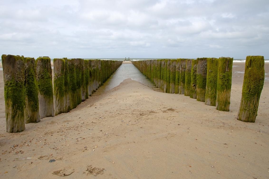 Golfbrekers - . - foto door goosveenendaal op 14-07-2014 - deze foto bevat: strand, zee, palen, zeeland, golfbrekers, dieptewerking