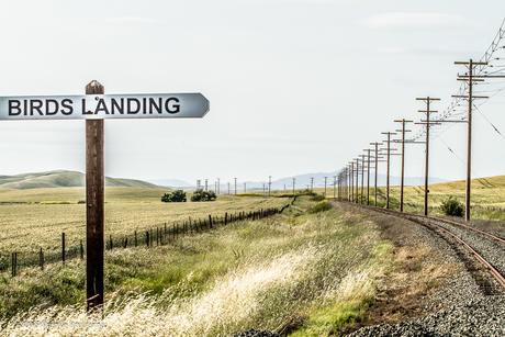 Birds Landing California