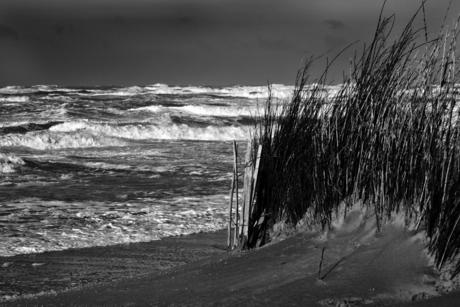 Aan het strand 6