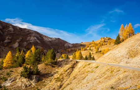 Alpen in herfstkleuren,,,, - - - foto door Terpstra.A op 10-11-2019 - deze foto bevat: lucht, natuur, herfst, landschap, bomen, bergen, alpen