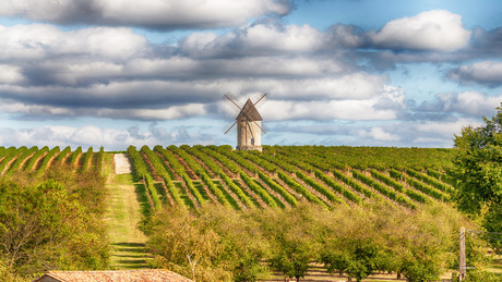 Landschap-Dordogne