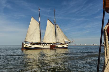 Sail out 2018 Harlingen