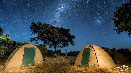 Botswana sky - Na het avondeten liet de sterrenhemel zich van z'n beste kant zien tijdens kampeersafari in de Botswaanse Bush. De boom en tentjes zijn opgelicht met - foto door frvanber op 04-08-2013 - deze foto bevat: fire, kamp, botswana, bush, stars, melkweg, camp, Campfire