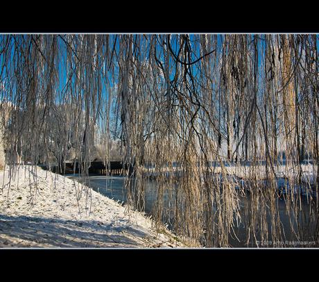 Winter10 (200)