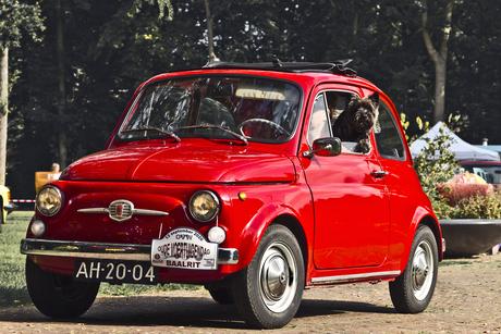 FIAT 500L 1969 (5929)