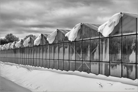 Sneeuw + Wind.  - Mooie sculpturen aan de kas als gevolg van aanhoudende harde wind en stuifsneeuw.  - foto door Mr-BBQ op 09-04-2021 - deze foto bevat: zwart/wit, wolk, lucht, gebouw, sneeuw, hek, zwart en wit, bevriezing, helling, landschap, facade